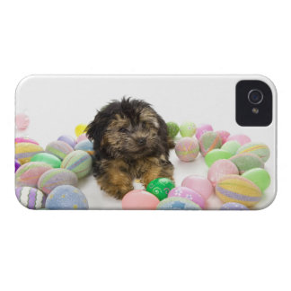 A Yorkie-poo puppy and Easter eggs. iPhone 4 Cover