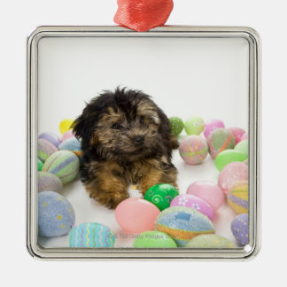 A Yorkie-poo puppy and Easter eggs. Metal Ornament