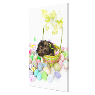 A Yorkie-poo puppy encountering an Easter basket Canvas Print