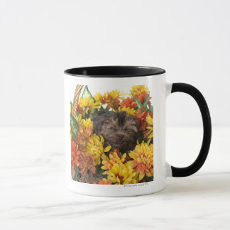 A Yorkie-Poo puppy in a basket of artificial Mug