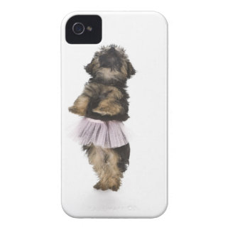 A Yorkie-poo puppy in a tutu on her hind legs. iPhone 4 Cover