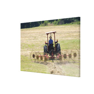 A young boy driving a tractor harvesting canvas print