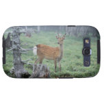 A young deer in a forest clearing galaxy SIII cases