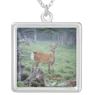 A young deer in a forest clearing silver plated necklace