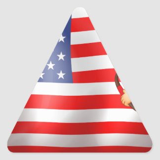 A young Indian and the USA flag Triangle Sticker