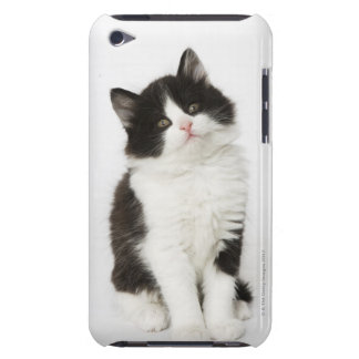 A young kitten sitting looking into the camera Case-Mate iPod touch case