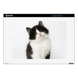 """A young kitten sitting looking into the camera decal for 15"""" laptop"""
