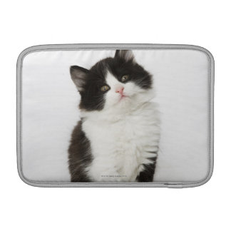 A young kitten sitting looking into the camera MacBook sleeve