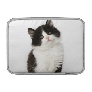 A young kitten sitting looking into the camera MacBook sleeves