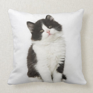 A young kitten sitting looking into the camera throw pillow