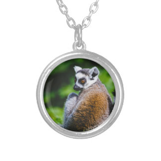 A Young Lemur, Animal Photography Pendant