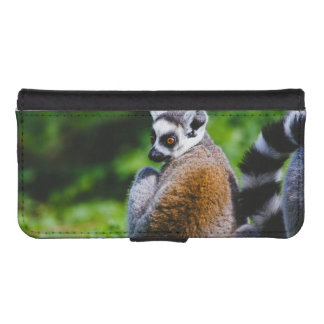 A Young Lemur, Animal Photography iPhone 5 Wallet Cases