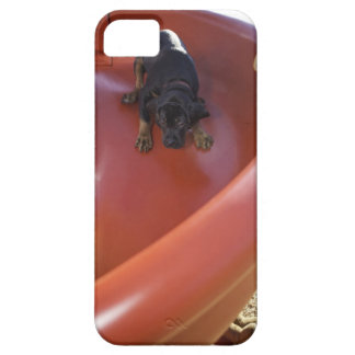 a young puppy sliding down a slide iPhone SE/5/5s case