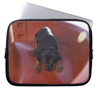 a young puppy sliding down a slide laptop sleeve