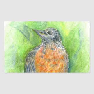 A Young Robin - watercolor pencil Rectangle Stickers
