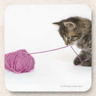 A young tabby kitten playing with a ball of drink coaster