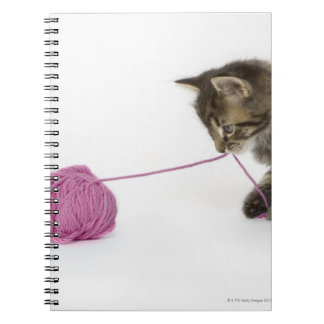 A young tabby kitten playing with a ball of spiral notebook