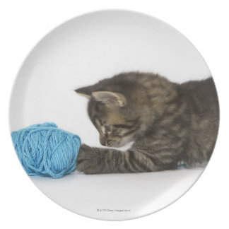 A young Tabby kitten playing with wool Dinner Plate