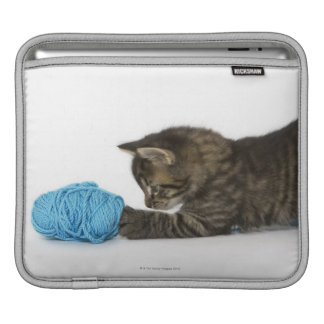 A young Tabby kitten playing with wool Sleeves For iPads