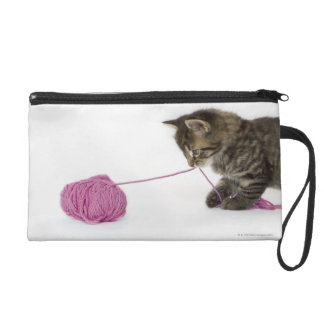 A young tabby kitten playing wristlet purse