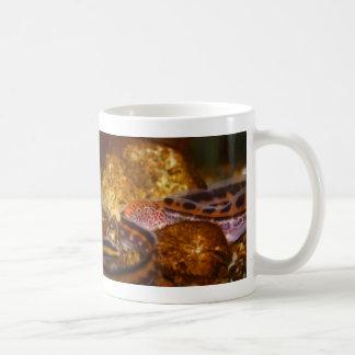 A young Wolf EEL Coffee Mug