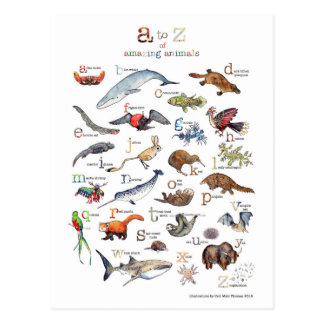 A-Z of amazing animals Postcard