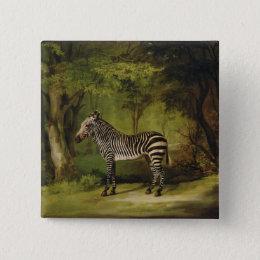 A Zebra, 1763 (oil on canvas) Pinback Button