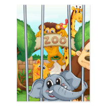 a zoo and the animals postcard