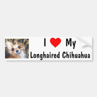 AA Example of Personalized Dog Bumper Sticker