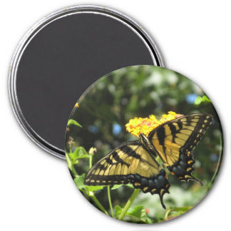 AA-  Yellow Swallowtail Butterfly Magnet