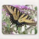 AA- Yellow Swallowtail Butterfly Mousepad