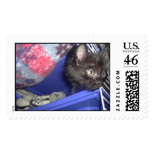 aaa0760_23 stamp