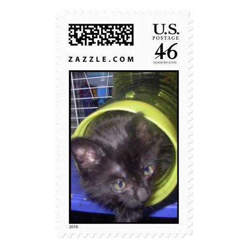 aaa0760_39_0001 postage stamp
