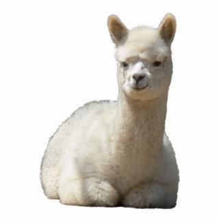 Aah escultura de la foto de la alpaca fotoescultura vertical