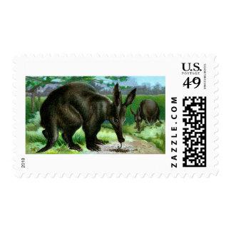 Aardvark Postage Stamp