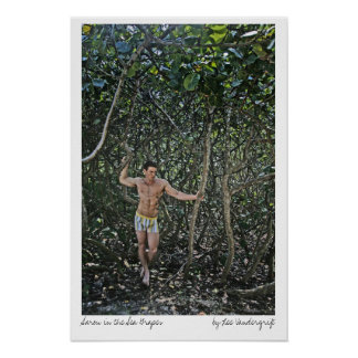 Aaron in the Sea Grapes by Lee Vandergrift Poster