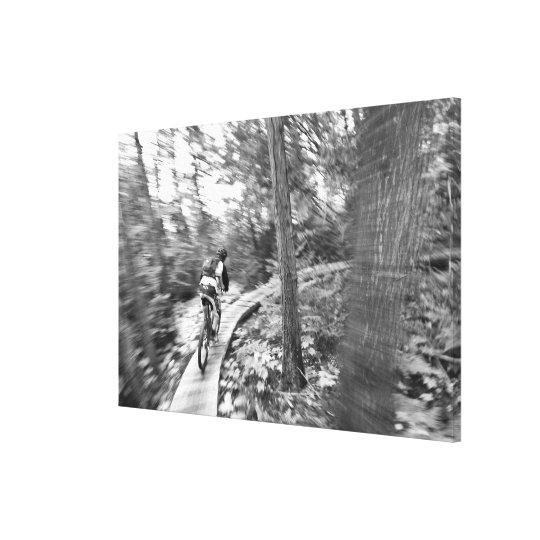 Aaron Rodgers mountain biking on the Stairway to Canvas Print