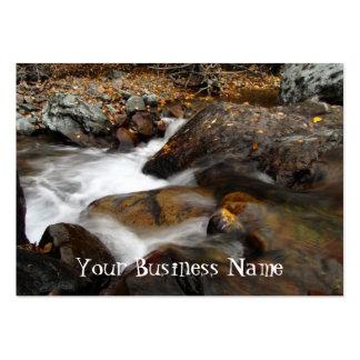 AAW Alaskan Autumn Waterfall Business Cards