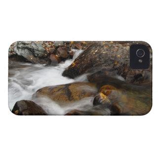 AAW Alaskan Autumn Waterfall Case-Mate iPhone 4 Case