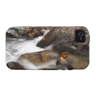 AAW Alaskan Autumn Waterfall Vibe iPhone 4 Case