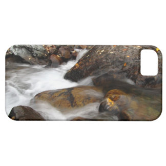 AAW Alaskan Autumn Waterfall iPhone 5 Case