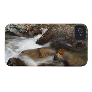 AAW Alaskan Autumn Waterfall iPhone 4 Case-Mate Cases