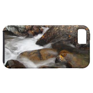 AAW Alaskan Autumn Waterfall iPhone 5 Cover