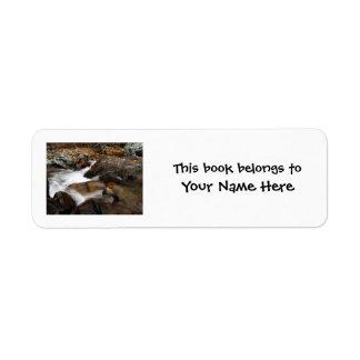 AAW Alaskan Autumn Waterfall Custom Return Address Labels