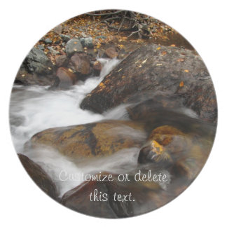AAW Alaskan Autumn Waterfall Melamine Plate