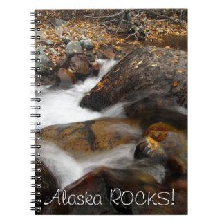 AAW Alaskan Autumn Waterfall Spiral Note Book