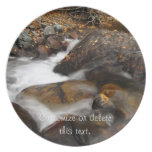 AAW Alaskan Autumn Waterfall Party Plate