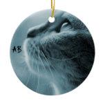 AB - The Cat Round Ceramic Decoration