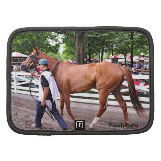 Abaco - Phipps Stables Planners