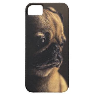 Abadejo del perrito del barro amasado iPhone 5 carcasa